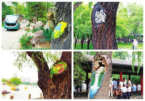 树洞画露脸公园